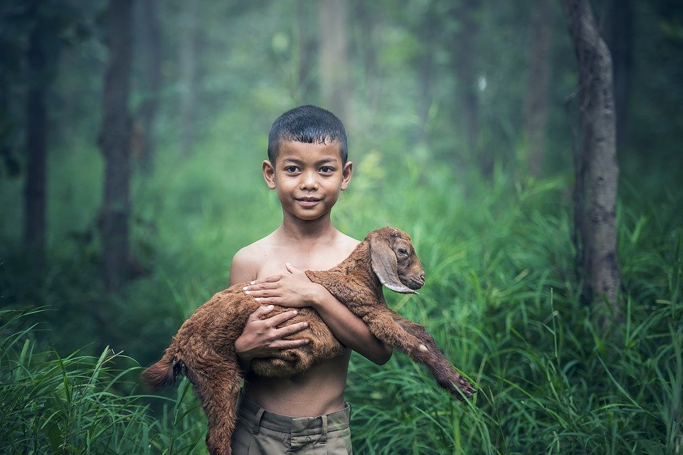 Care is the only Language that Speaks