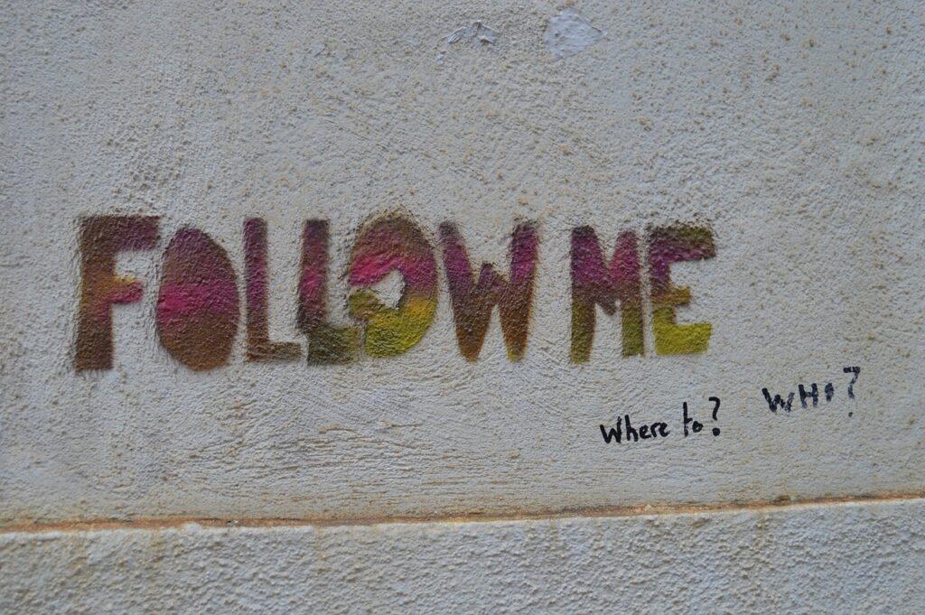 Follow Me. Viddya's Wisdom